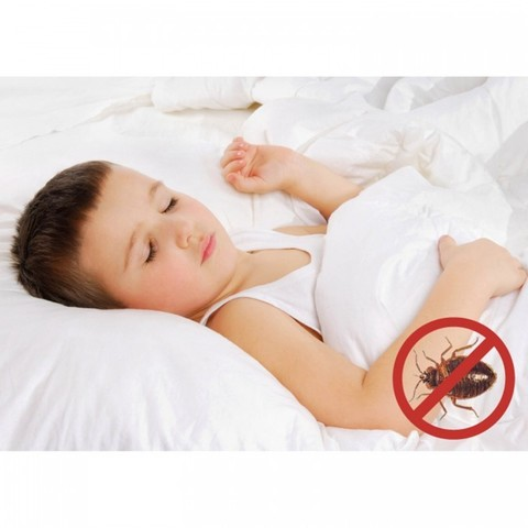 защита от постельных клещей