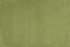 Микровелюр Phlox (Флокс) 12