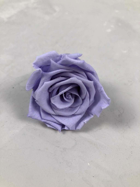 Роза классическая фиолетовая d=3,5-4 см