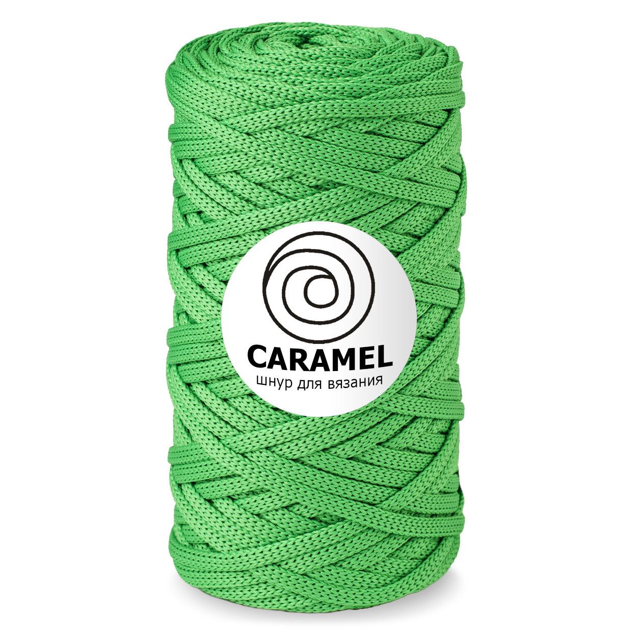 Плоский полиэфирный шнур Caramel Полиэфирный шнур Caramel Яблоко new_image.jpeg
