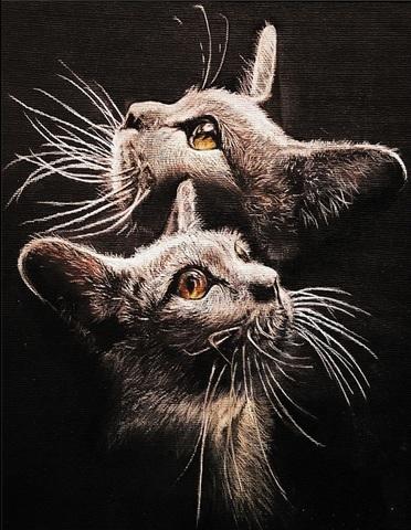 Алмазная Мозаика 40x50 Черные котята (арт. HWSA5124)