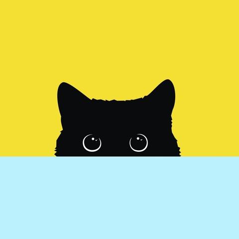 Алмазная Мозаика 40x50 Черный кот прячется