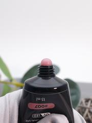 Акрил-гель (Acryl gel) #007, 15 ml