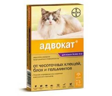 Адвокат  для кошек весом 4-8кг (1 пипетка 0,8мл)
