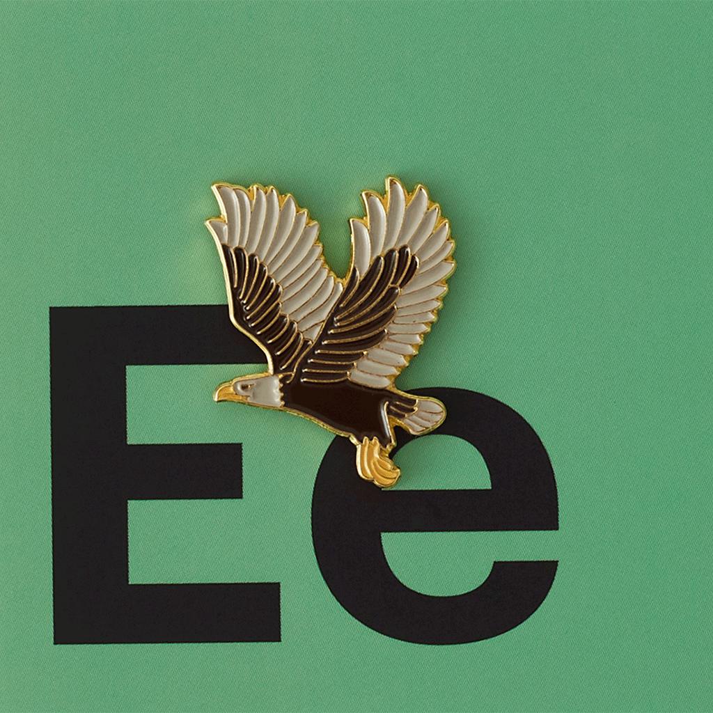 Значок металлический Зоопарк: Орел
