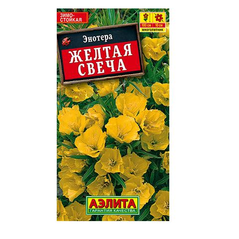 Энотера Желтая свеча   (Аэлита)