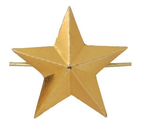 Звезда на погоны мет. 20 мм зол.
