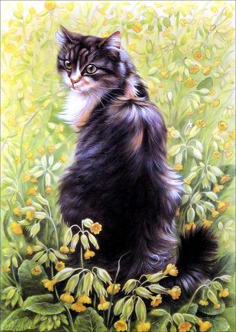 Картина раскраска по номерам 40x50 Кот в цветах