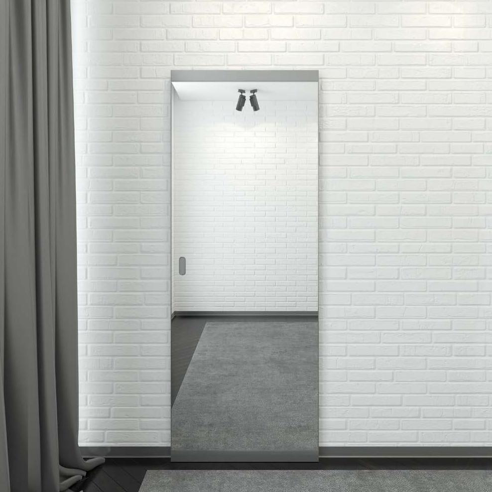 Двери с зеркалом Межкомнатная алюминиевая дверь с зеркалом с лицевой стороны и под покраску с внутренней стороны на скрытом раздвижном механизме Magic Easy Снимок_экрана_2021-09-11_в_16.55.31.png