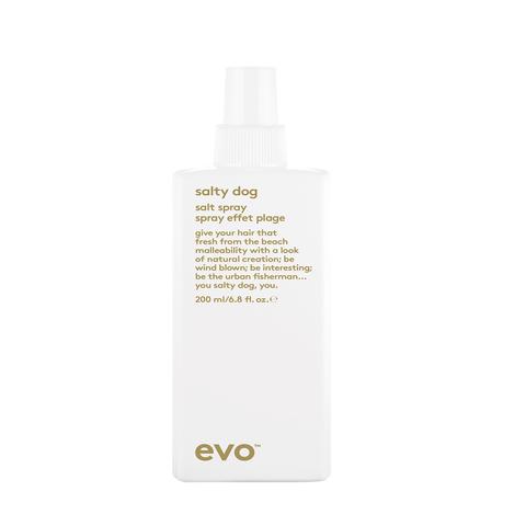 EVO Текстурирующий спрей [пляжон(ка)] Salty Dog Salt Spray