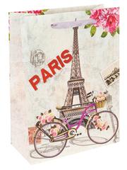 Пакет подарочный с мат. лам. Прекрасный Париж 18х24х8.5 см (M).