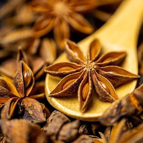 Травы Анис (Бадьян звёздчатый), цветки illicium-blossom-86.jpg