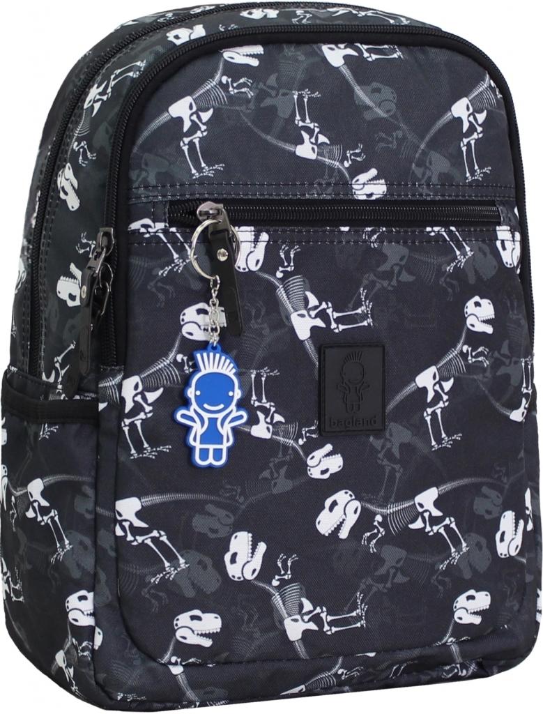 Детские рюкзаки Рюкзак Bagland Young 13 л. сублімація 245 (00510664) cd3fff756f16103877d212315a8103a7.JPG