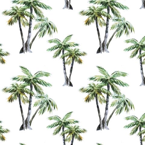 Акварельный пальмы