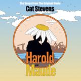 Soundtrack / Cat Stevens: Harold And Maude (Limited Edition)(Coloured Vinyl)(LP)
