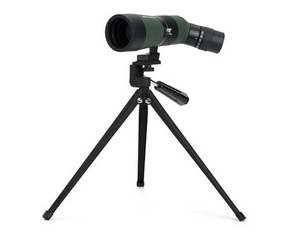 Celestron LandScout 50 10-30x 50 с наклонной оптической осью