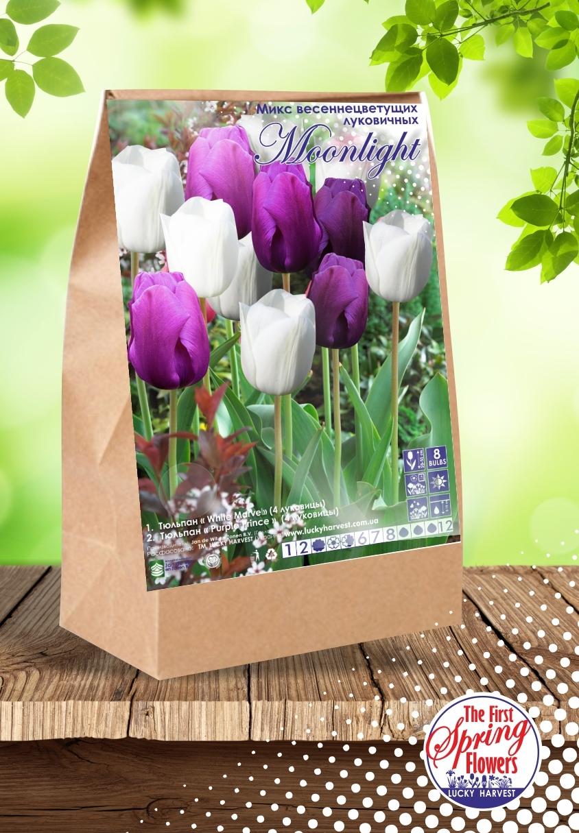 Смесь   Ранних  Тюльпанов