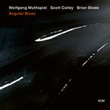 Wolfgang Muthspiel, Scott Colley, Brian Blade / Angular Blues (LP)