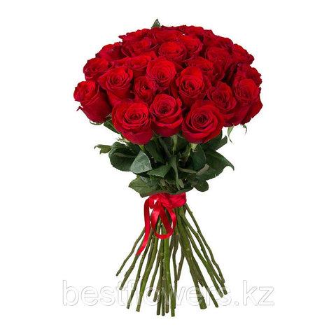 Букет из 19 Голландских высоких красных роз