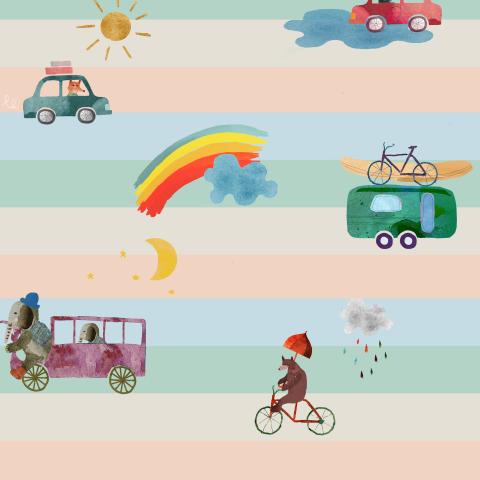 little transport