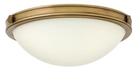 Потолочный светильник Hinkely Lighting, Арт. HK/COLLIER/F/S
