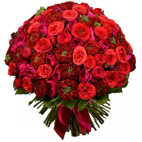 Букет с пионовидными розами красный 101шт