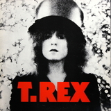 T. Rex / The Slider (LP)