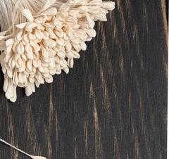 Тычинки двусторонние пастельные 2 мм, 85 шт.