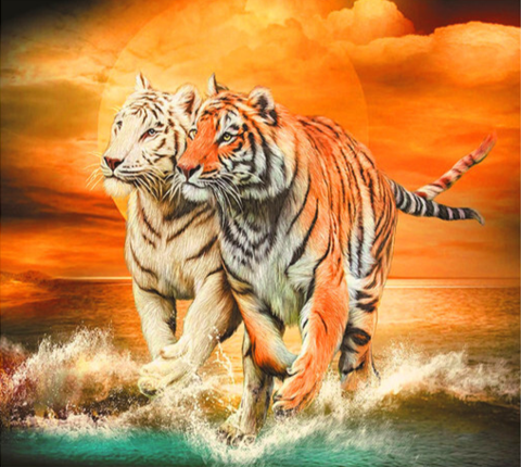Алмазная Мозаика 30x40 Прогулка тигров у моря (арт.HZM1142)