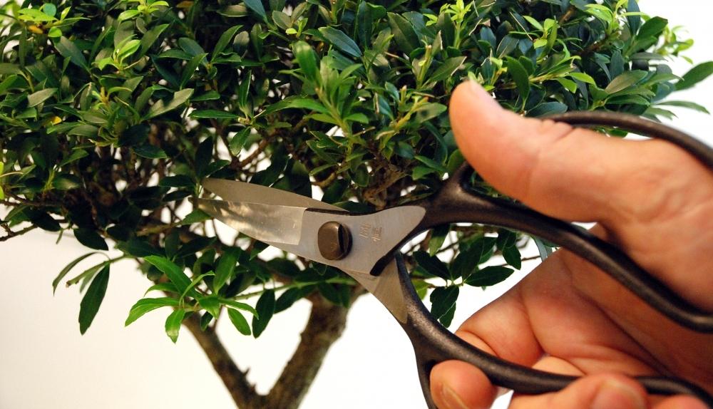 Ножницы для бонсай Okatsune 221, 200/52 мм