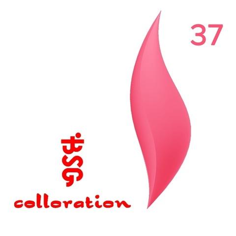BSG Colloration, №37 Ярко-розовый купить за 650руб