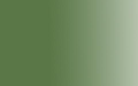 Краска акриловая Amsterdam Expert туба 75мл №668 Chromium ox.green
