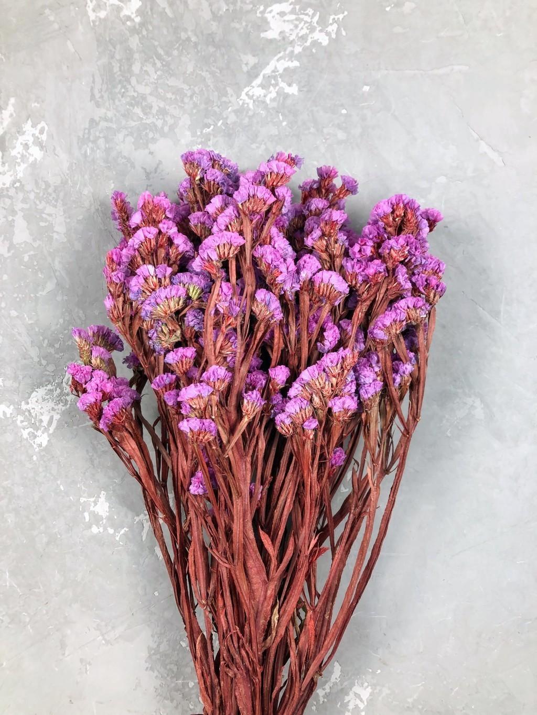 Статица стабилизированная розово-красная