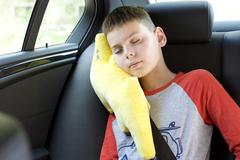 Подушка на ремень безопасности Клювонос Молния