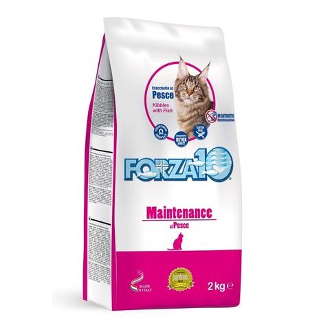 Forza10 Maintenance Pesce (рыба) 31/12