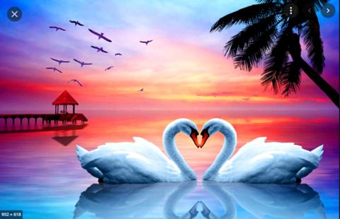 Алмазная Мозаика 30x40 Лебеди на фоне красивого заката (Арт. MТС71599)
