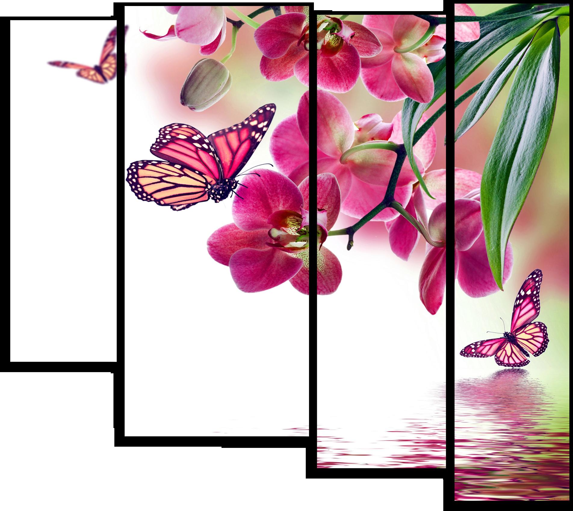 """Цветы Модульная картина """"Дикая Орхидея"""" М220.png"""