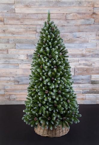 Искусственная елка Императрица с шишками 185 см заснеженная