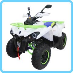 Бензиновый квадроцикл MOTAX ATV Grizlik 200 NEW