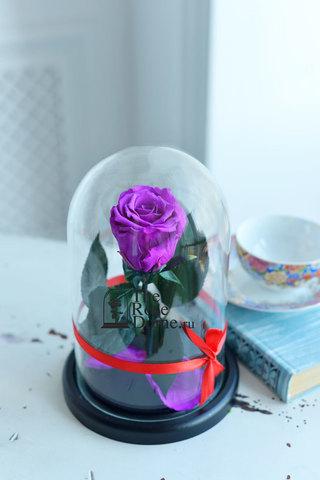 Роза в колбе Mini ОПТОМ Выс*Диам*Бутон (22*12.5*6см), Цвет фиолетовый