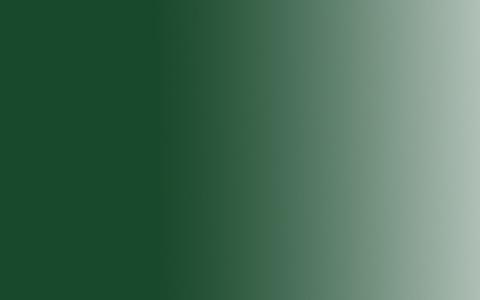 Акрил Amsterdam Expert, 75мл, №623 Зеленая крушина