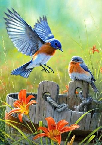 Алмазная Мозаика 20x30 Лазурные птицы на деревянном ведре (арт. MTCH8250)