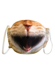 Маска тканевая Gekoko «Дерзкий кот» 2