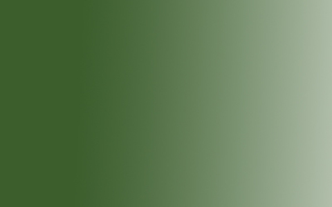 Акрил Amsterdam Expert, 75мл, №620 Зеленый оливковый