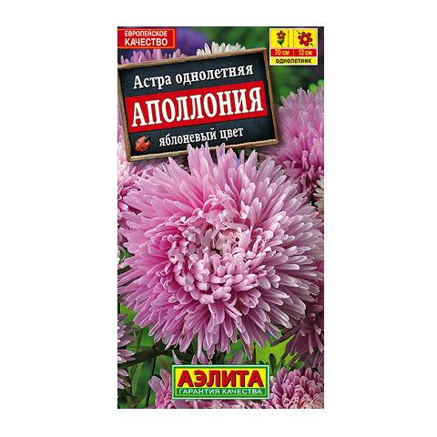 Астра Аполлония яблоневый цвет (Аэлита)