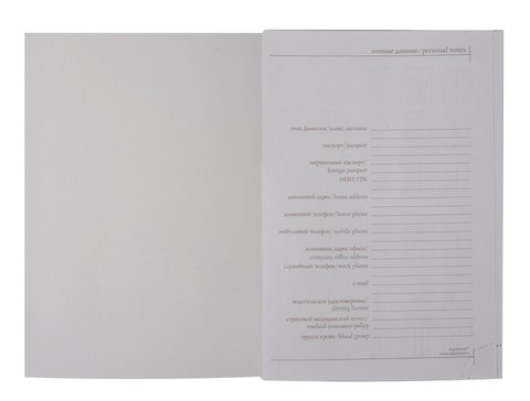 Мотивирующий ежедневник с надписью серебряного цвета