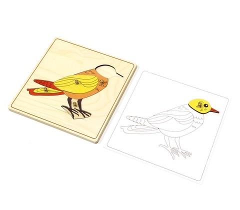 Строение птицы пазл