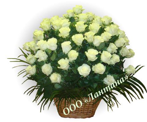 Корзина  из живых цветов КЖ-02