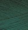 Alize Forever crochet 148 (Темная зелень)