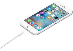 Кабель Apple USB - Lightning (MQUE2ZM/A) 1м